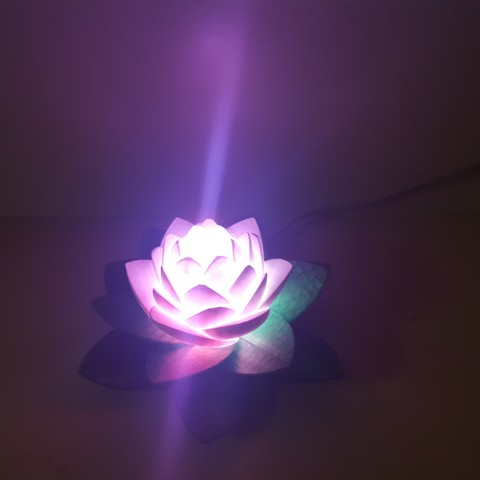 20190703_154116.jpg Download free STL file Lotus Lamp #POLYMAKERCHALLENGE  • 3D print object, Job