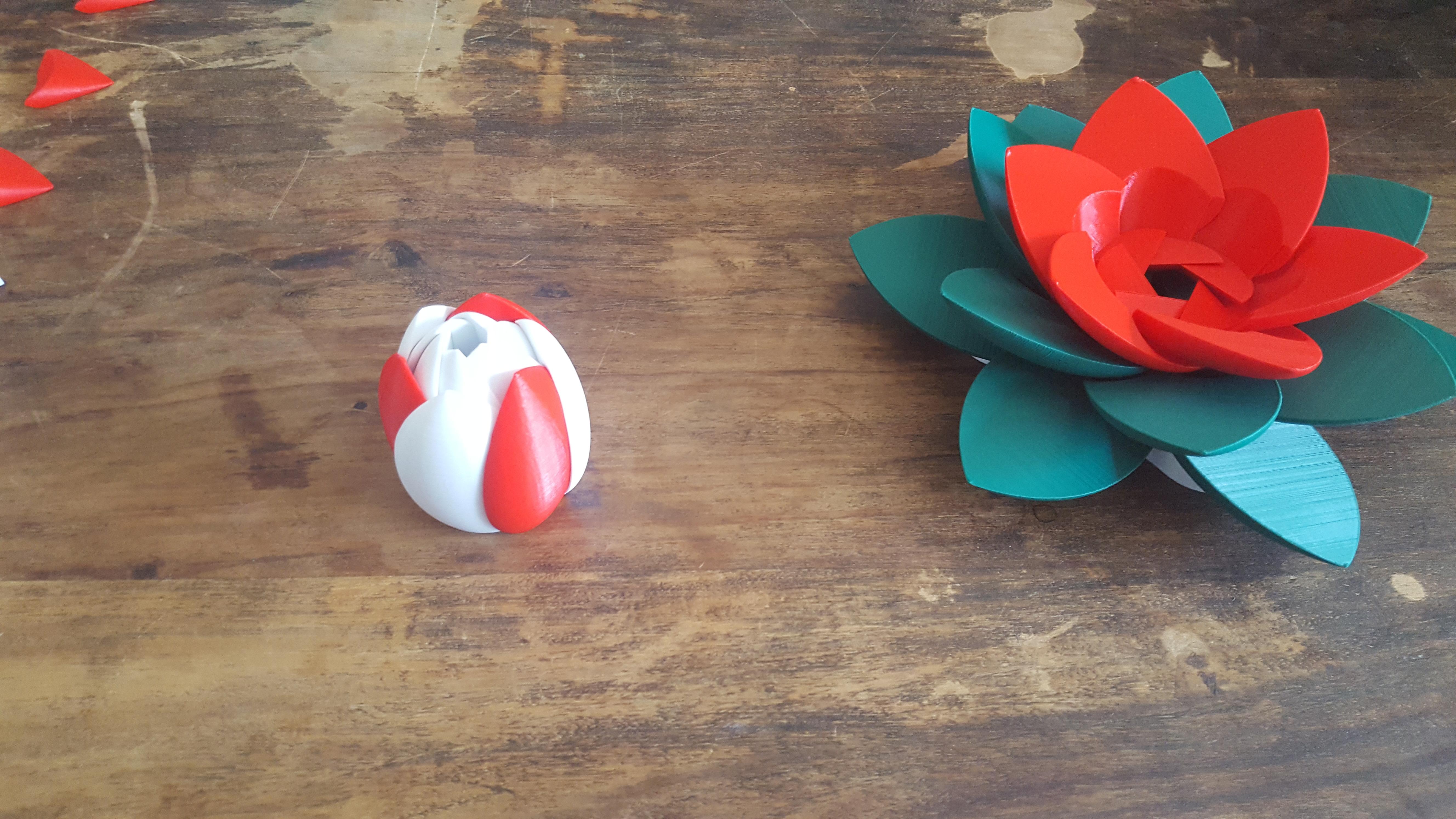 20190706_103148.jpg Download STL file Flower Puzzle • 3D print design, Job