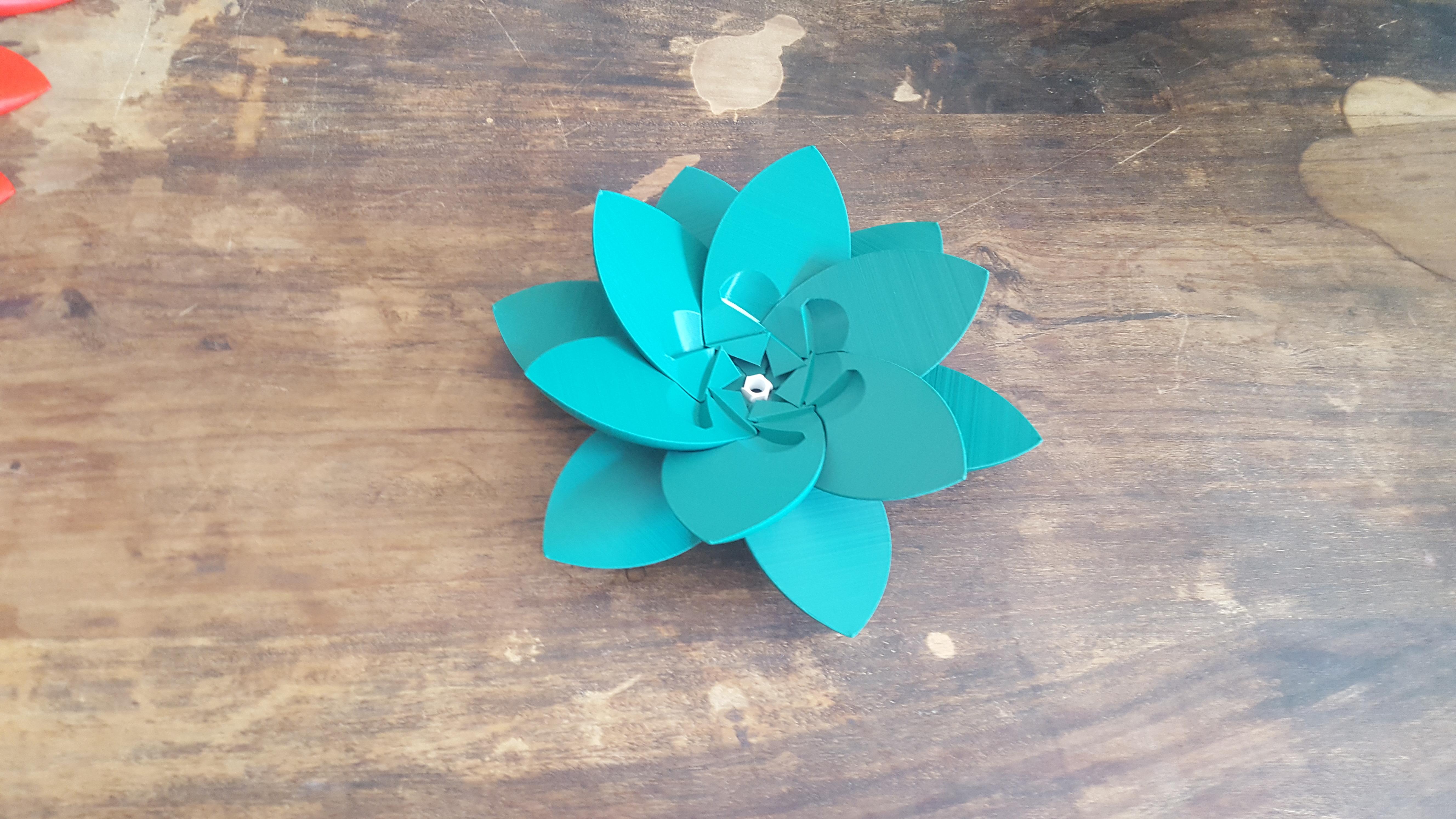 20190706_102604.jpg Download STL file Flower Puzzle • 3D print design, Job