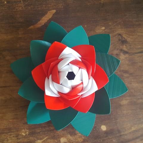 20190706_103510.jpg Download STL file Flower Puzzle • 3D print design, Job