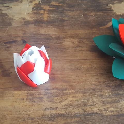 20190706_103249.jpg Download STL file Flower Puzzle • 3D print design, Job