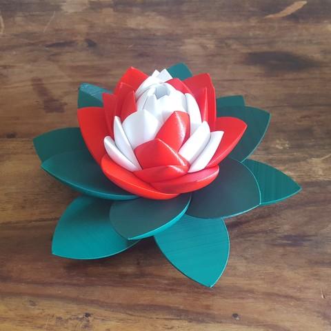 20190706_103935.jpg Download STL file Flower Puzzle • 3D print design, Job