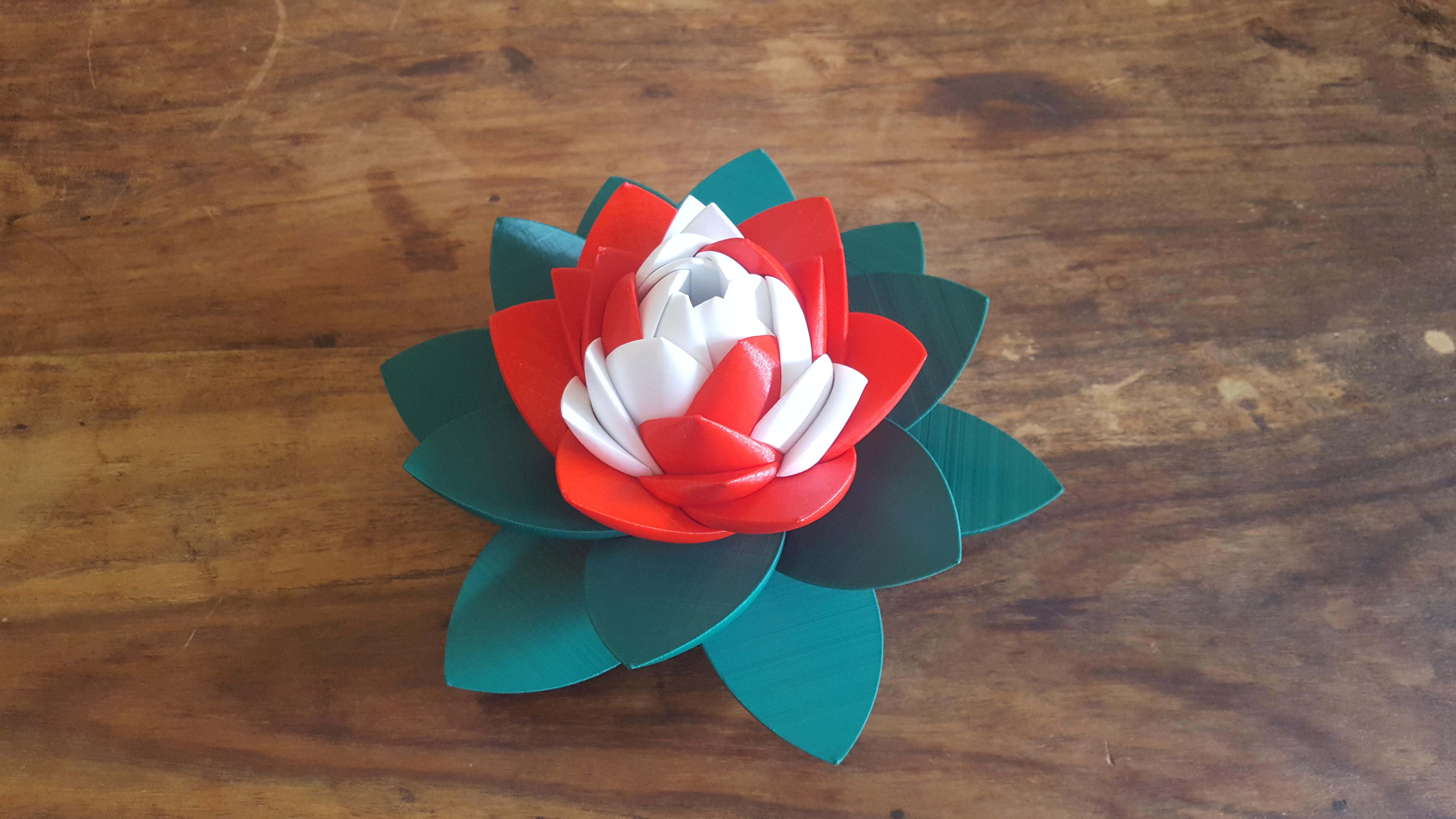 20190706_103820.jpg Download STL file Flower Puzzle • 3D print design, Job