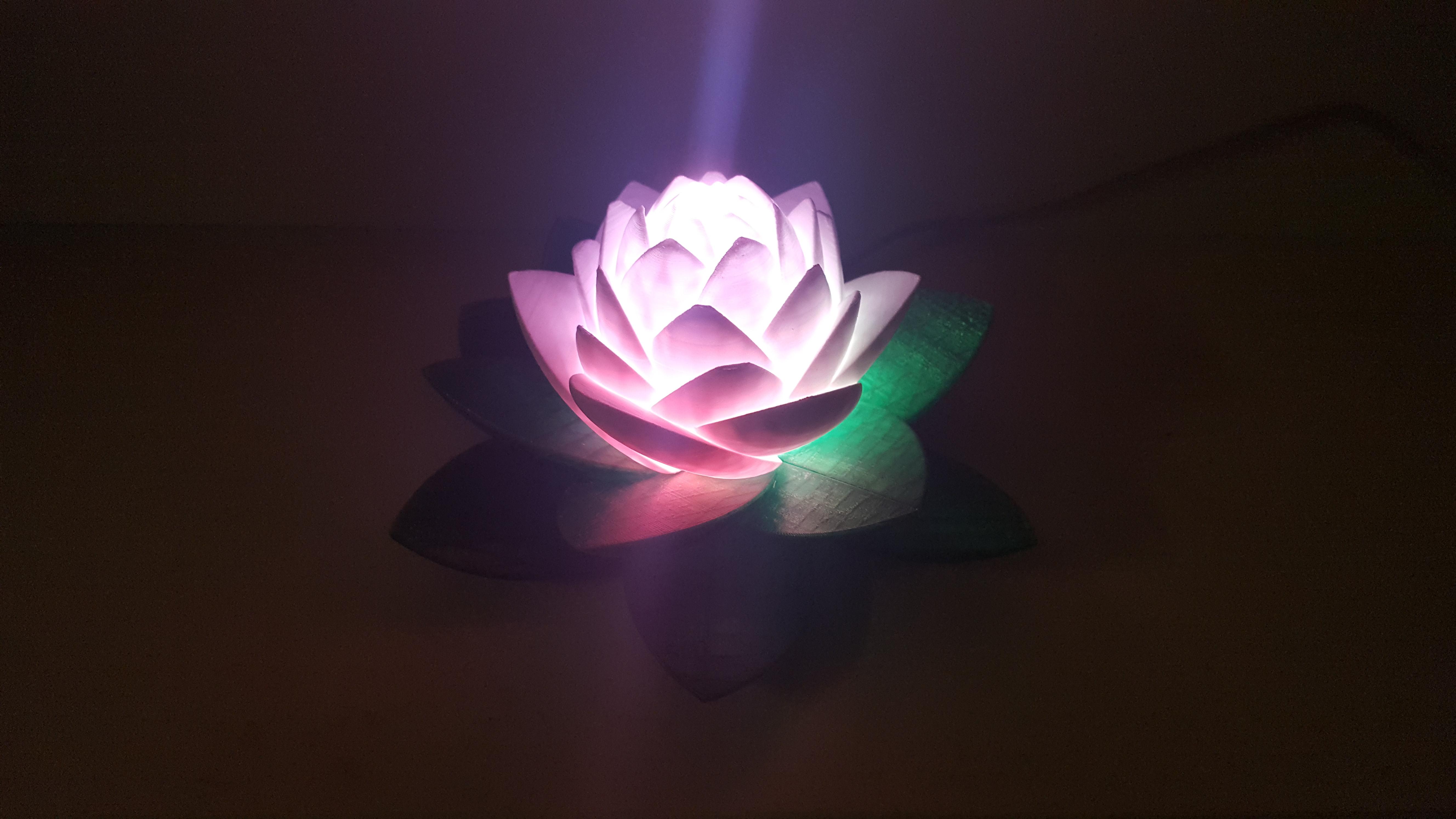 20190703_154143.jpg Download free STL file Lotus Lamp #POLYMAKERCHALLENGE  • 3D print object, Job