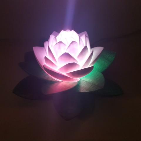 20190703_154143.jpg Télécharger fichier STL gratuit Lampe Lotus #POLYMAKERCHALLENGE • Modèle pour impression 3D, Job
