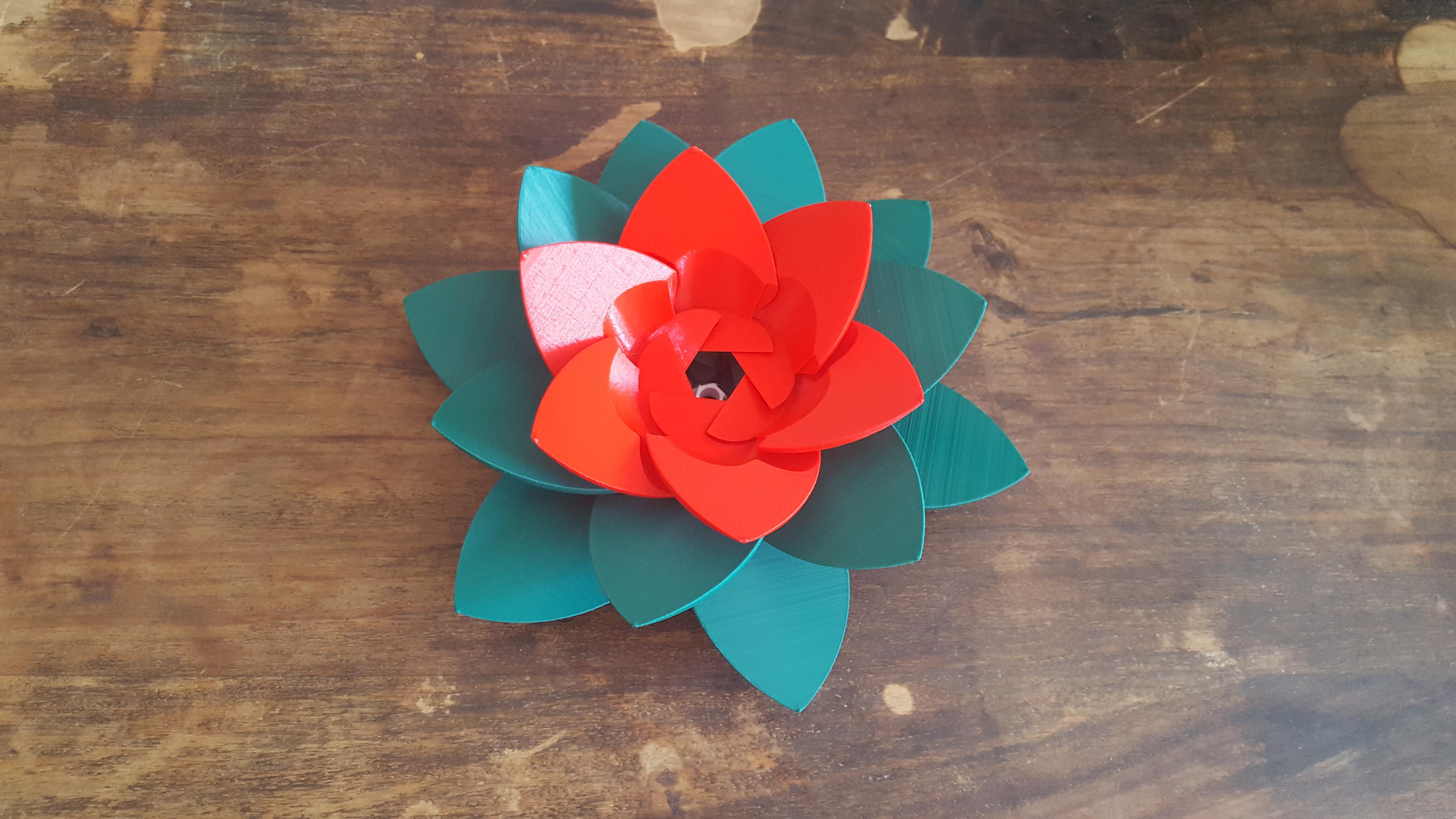 20190706_102906.jpg Download STL file Flower Puzzle • 3D print design, Job