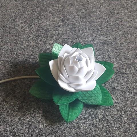 20190703_155634.jpg Télécharger fichier STL gratuit Lampe Lotus #POLYMAKERCHALLENGE • Modèle pour impression 3D, Job