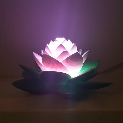 20190703_154012.jpg Télécharger fichier STL gratuit Lampe Lotus #POLYMAKERCHALLENGE • Modèle pour impression 3D, Job