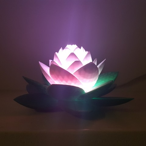 20190703_154012.jpg Download free STL file Lotus Lamp #POLYMAKERCHALLENGE  • 3D print object, Job
