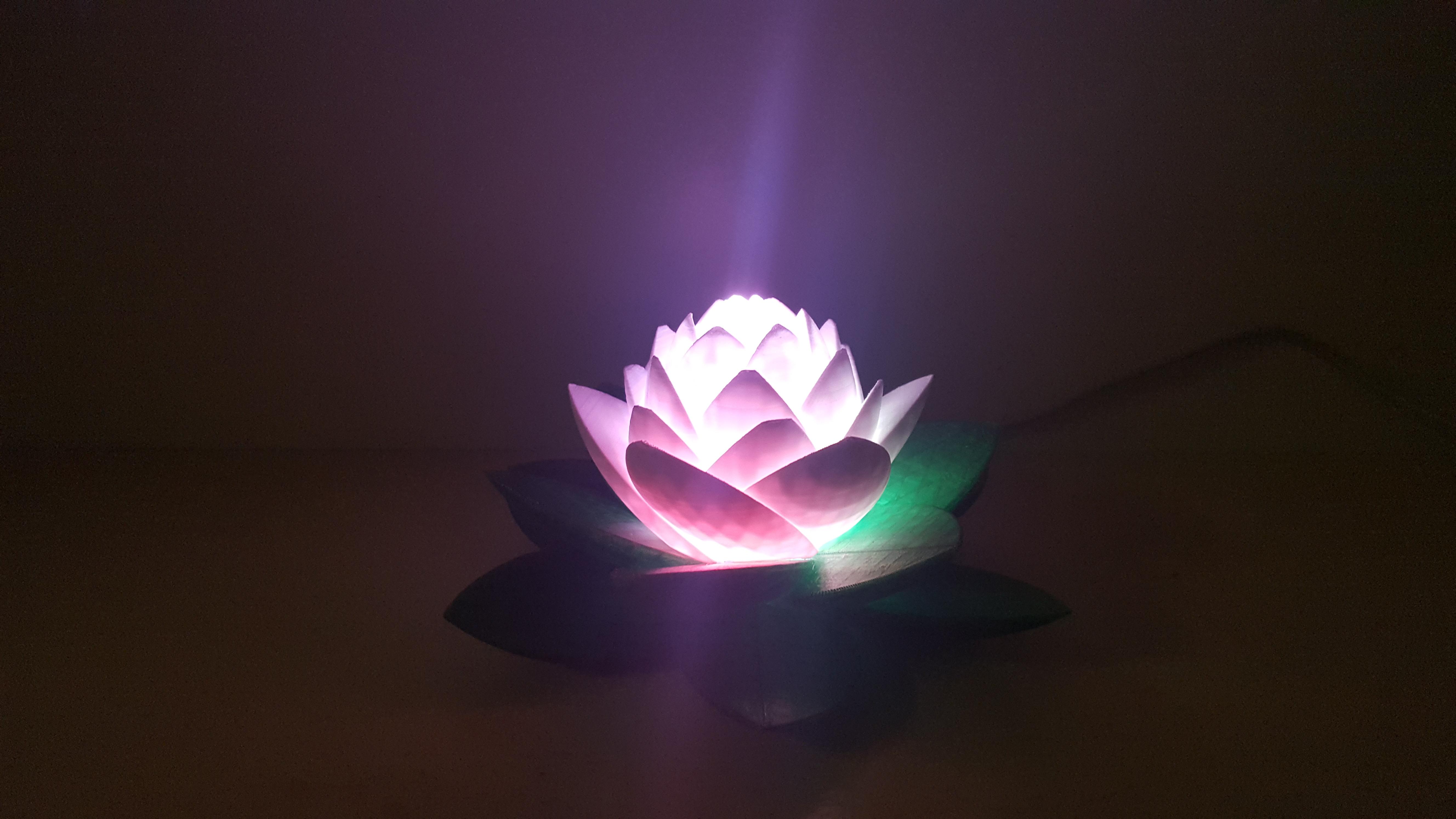 20190703_154014.jpg Télécharger fichier STL gratuit Lampe Lotus #POLYMAKERCHALLENGE • Modèle pour impression 3D, Job