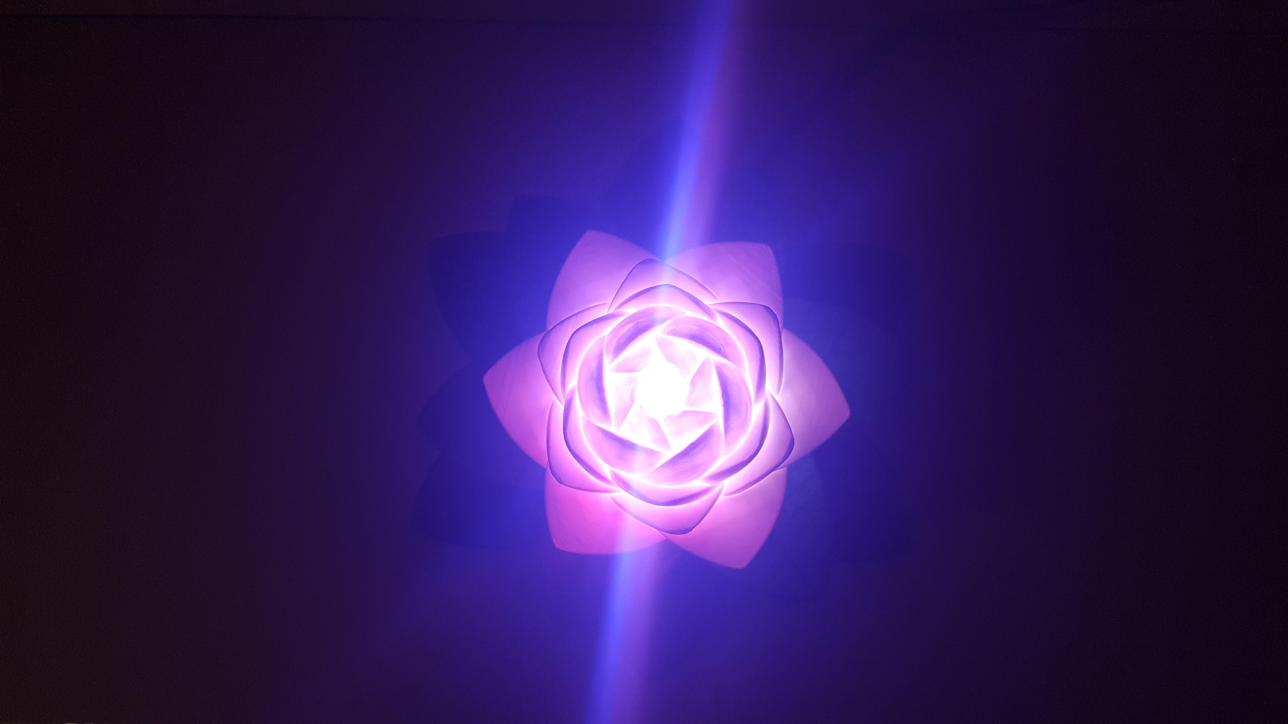 20190703_154125.jpg Download free STL file Lotus Lamp #POLYMAKERCHALLENGE  • 3D print object, Job