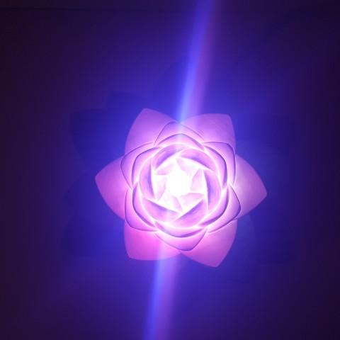 20190703_154125.jpg Télécharger fichier STL gratuit Lampe Lotus #POLYMAKERCHALLENGE • Modèle pour impression 3D, Job