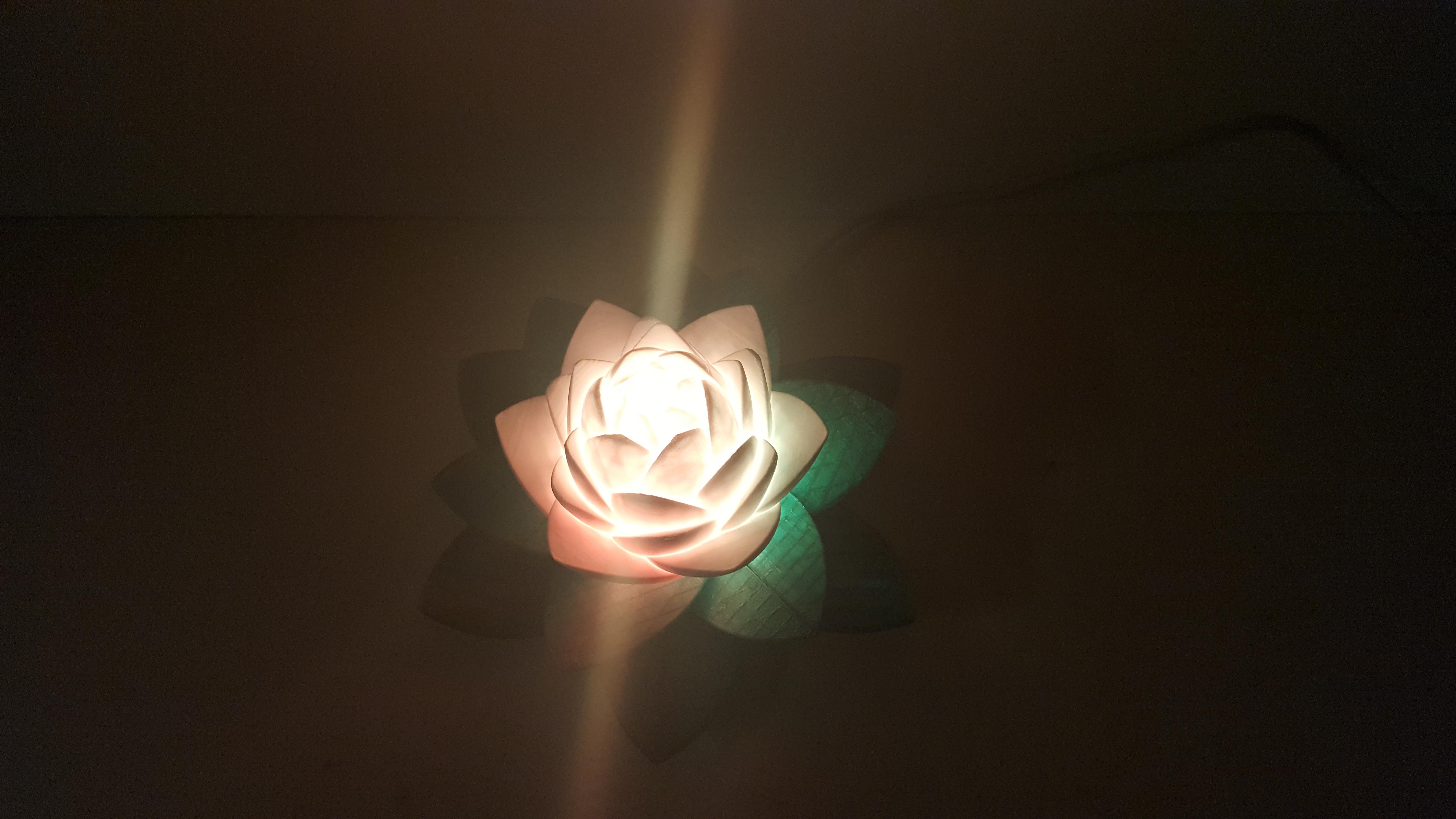 20190703_154044.jpg Télécharger fichier STL gratuit Lampe Lotus #POLYMAKERCHALLENGE • Modèle pour impression 3D, Job