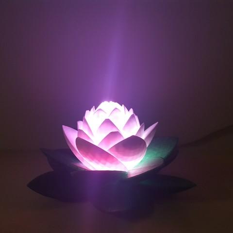 20190703_154112.jpg Télécharger fichier STL gratuit Lampe Lotus #POLYMAKERCHALLENGE • Modèle pour impression 3D, Job