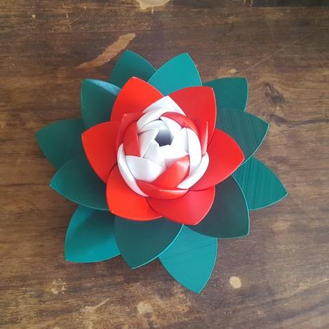 20190706_103414.jpg Download STL file Flower Puzzle • 3D print design, Job