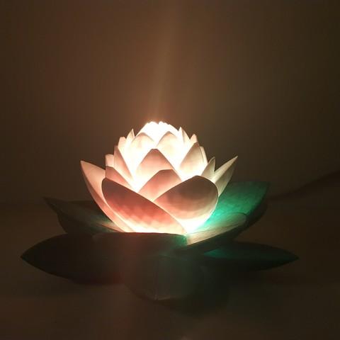 20190703_154037.jpg Télécharger fichier STL gratuit Lampe Lotus #POLYMAKERCHALLENGE • Modèle pour impression 3D, Job