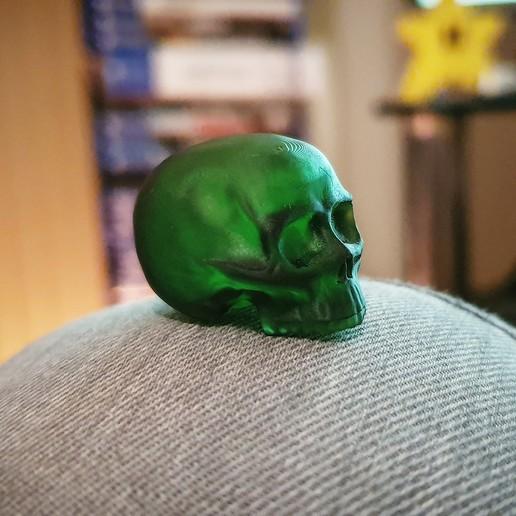 Télécharger modèle 3D gratuit Petit crâne, Code10100