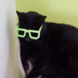 Free 3D print files 8-bit Glasses, Code10100