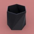 Free 3D file Twisted Vase Planter, TK3D