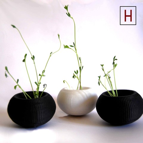 Free stl files Cute flower pot, HorizonLab