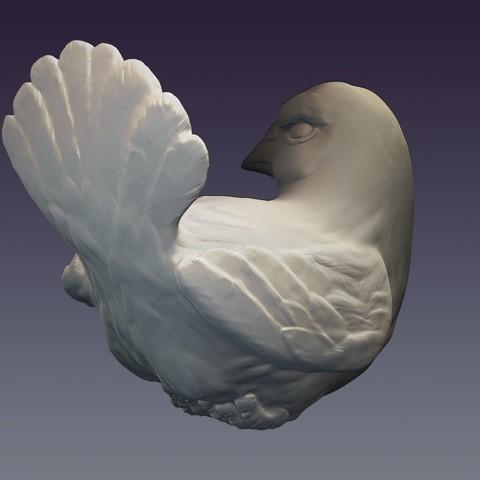 Pigeon_02.jpg Download OBJ file Decorative dove • 3D printing template, Mendeleyev