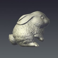 3D printer files Rabbit, Oldtinsold