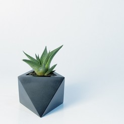 3D printer models Octaedro planter, atelierro