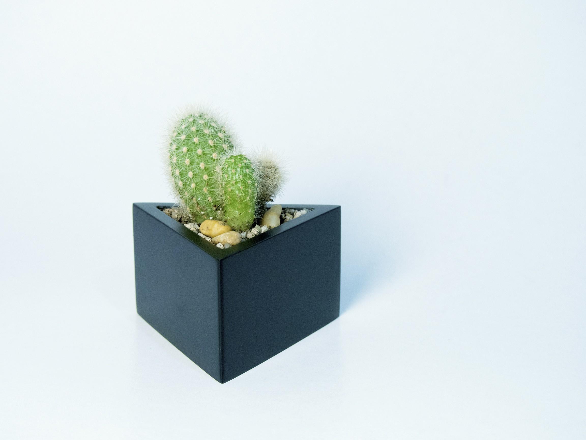P2140278.jpg Download STL file Prisma planter • 3D print template, atelierro