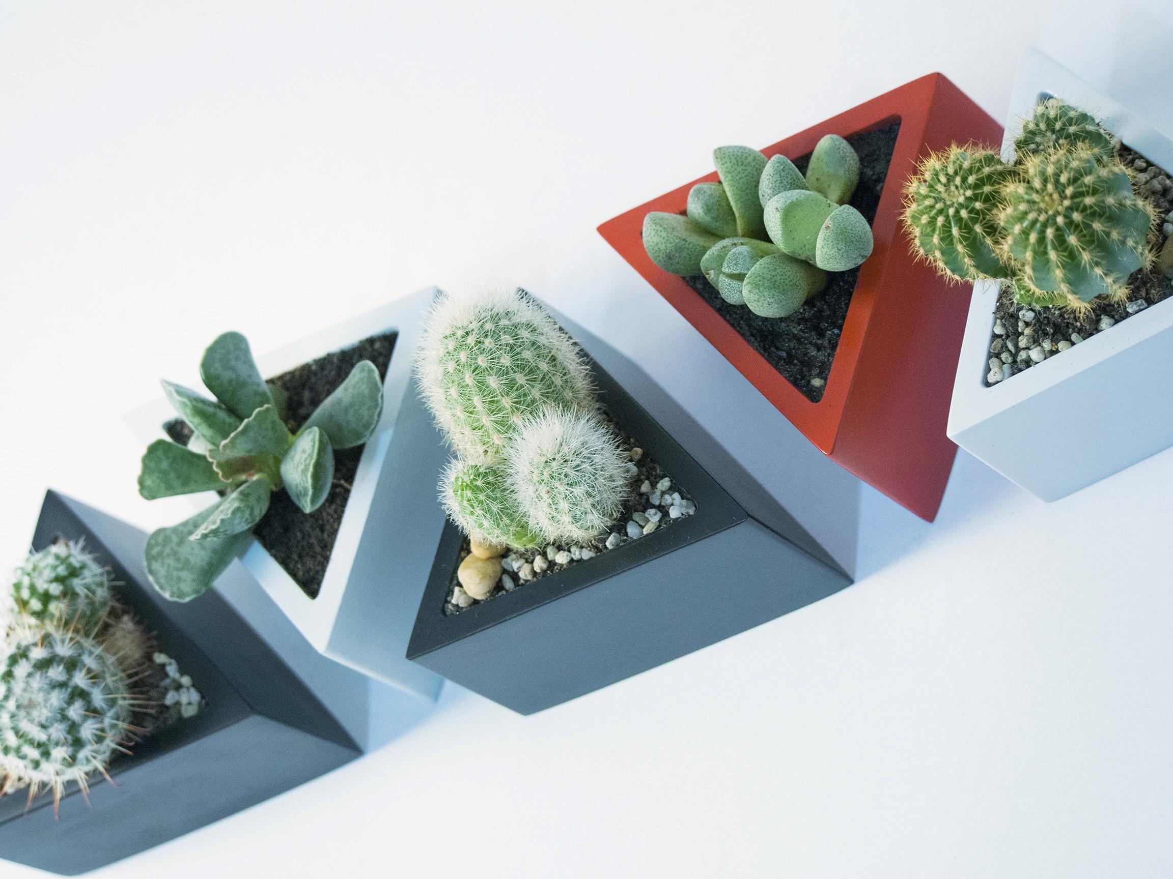 P2090358.jpg Download STL file Prisma planter • 3D print template, atelierro