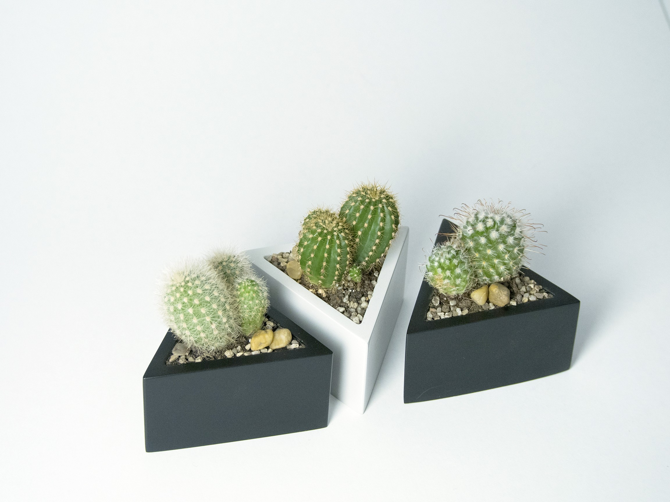 P2090296.jpg Download STL file Prisma planter • 3D print template, atelierro