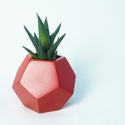 STL files Dodecaedro planter , atelierro