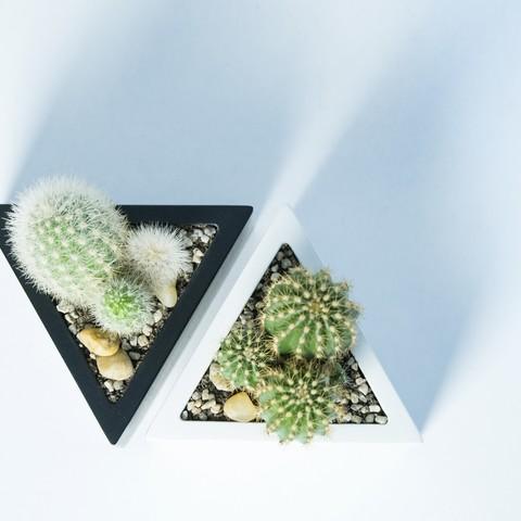 P2140284.jpg Download STL file Prisma planter • 3D print template, atelierro