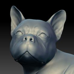 bulldog03.PNG Télécharger fichier STL Dog Bulldog HD • Objet à imprimer en 3D, stan42