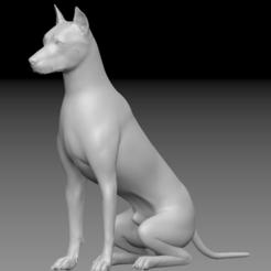 Descargar modelos 3D para imprimir Perro de alta definición, stan42