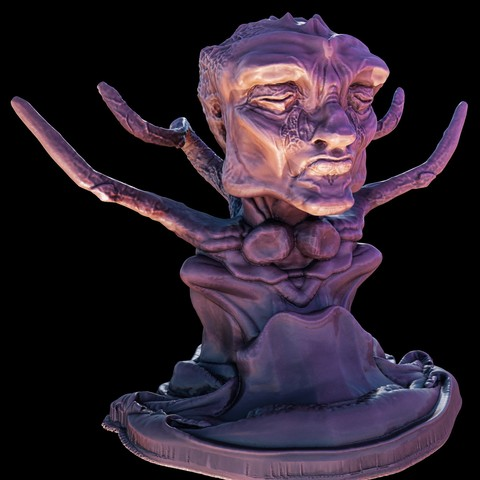 Download STL file Perriorann Bust • 3D printing model, iXaarii