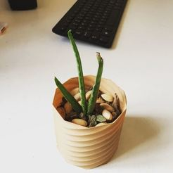 3d print files Planter , Brahmabeej