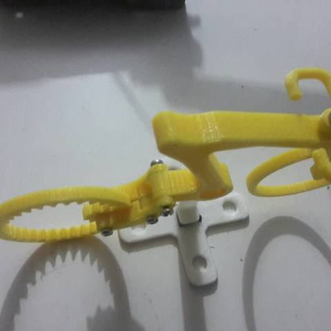 Archivos 3D gratis Juguete de bicicleta sin mangas, Brahmabeej