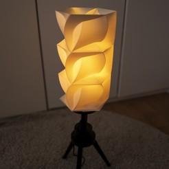 L1030515 copy.jpg Download STL file geometric lamp shade • 3D printer design, Ciokobango