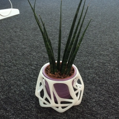 Download free 3D printing designs Parametric Flowerpots, meshtush