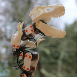 Free STL file The Ergosaurus Rex (Poppy Ergo Jr with T-Rex 3D printed parts), PoppyProject