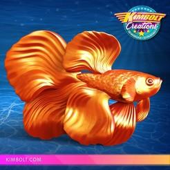 Download free 3D printing files Betta Fish, Kimbolt
