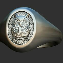 1.jpg Download OBJ file OWL RING 3D print model • Object to 3D print, stavros