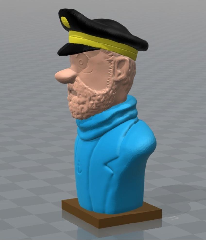 Capture d'écran 2017-09-29 à 11.58.13.png Download free OBJ file Captain Haddock • 3D printing model, MisterDiD