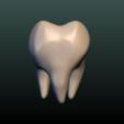 Tooth-06.png Download 3DS file Tooth • 3D printer design, Skazok