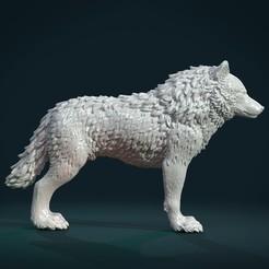 Download 3D printer templates Wolf IV, Skazok