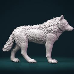 Download STL Wolf III, Skazok