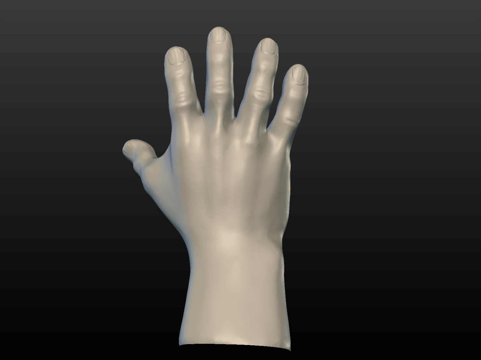 Hand-06.png Download 3DS file Hand • Object to 3D print, Skazok