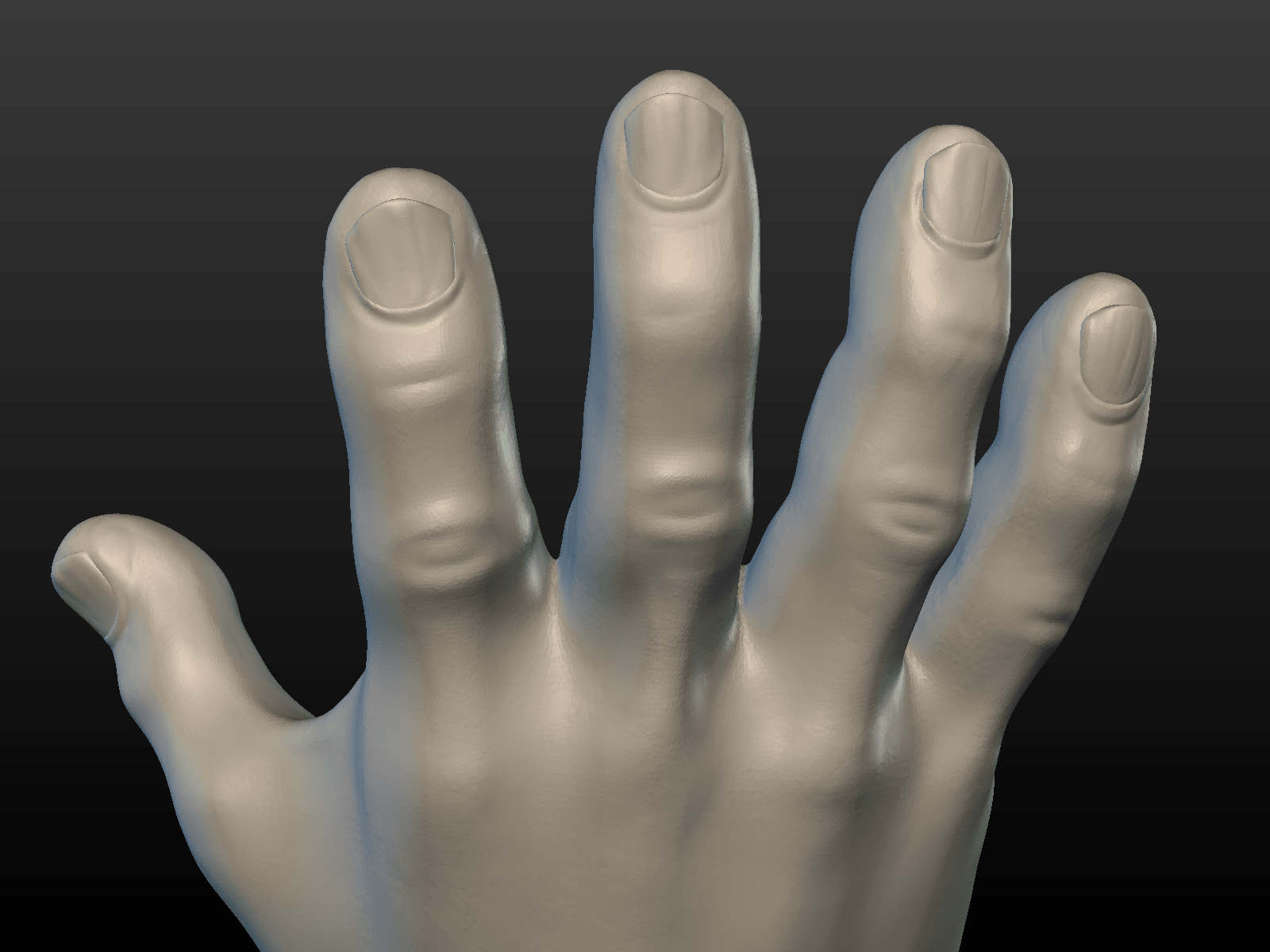 Hand-08.png Download 3DS file Hand • Object to 3D print, Skazok