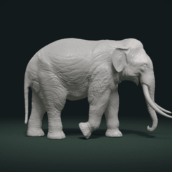 Download 3D printer templates Asian Elephant, Skazok