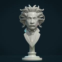 Einstein_01.jpg Télécharger fichier STL Le buste d'Einstein • Objet imprimable en 3D, Skazok